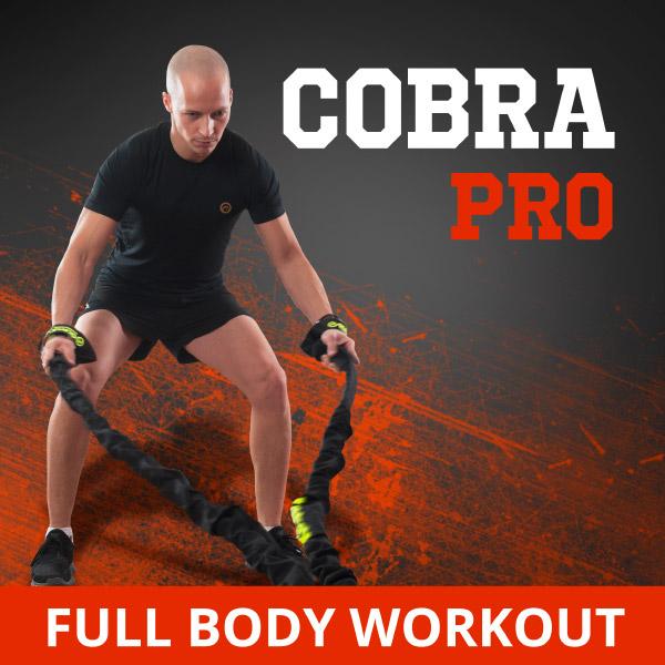 cobra-pro-kit new